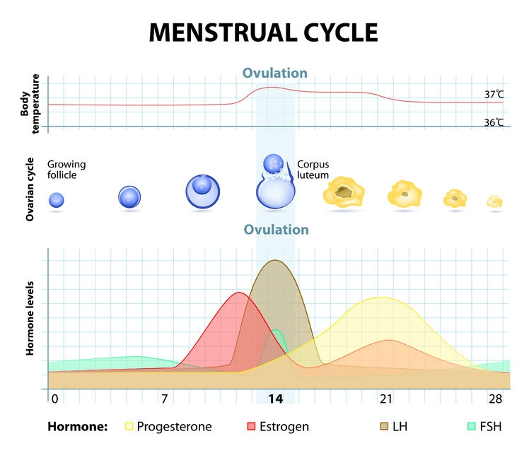 Natural treatments for PMDD